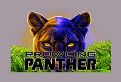 Prowling Panther kostenlos spielen