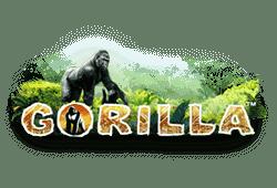 Gorilla Spielautomat gratis spielen