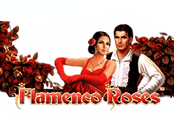 Novomatic Flamenco Roses logo