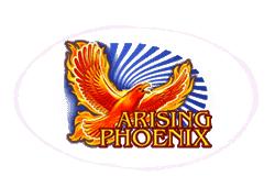Amatic Arising Phoenix logo