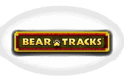 Novomatic Bear Tracks logo