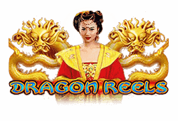 Dragon Reels Slot gratis spielen
