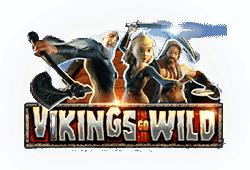 Vikings Go Wild Slot gratis spielen