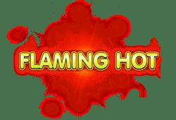 EGT Flaming Hot logo