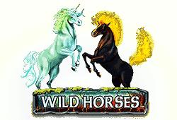 Wild Horses Slot kostenlos spielen