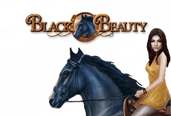 Bally Black Beauty logo