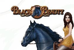 Black Beauty Slot kostenlos spielen