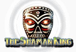 the shaman king spielen