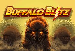 Playtech Buffalo Blitz logo