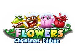 Flowers Christmas Edition Slot kostenlos spielen