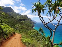 hawaii-mrgreen