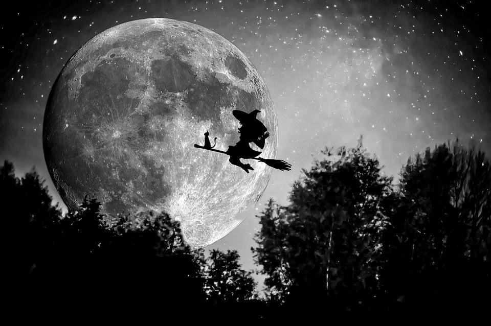 witchcraft-royal-panda