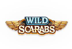 Microgaming Wild Scarabs logo
