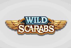 Wild Scarabs Slot kostenlos spielen