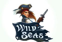 Elk Studios Wild Seas logo