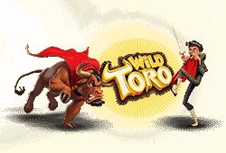 Elk Studios - Wild Toro slot logo