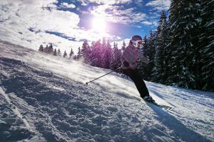 ski-omnislots