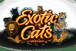Exotic Cats Slot kostenlos spielen