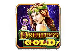 Druidess Gold Slot kostenlos spielen