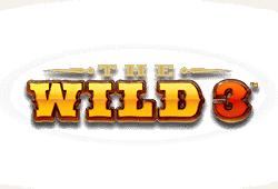 The Wild 3 Slot kostenlos spielen