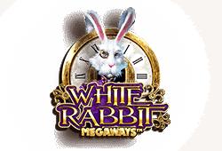 White Rabbit Slot kostenlos spielen