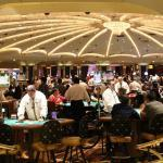 live casino-casinocruise