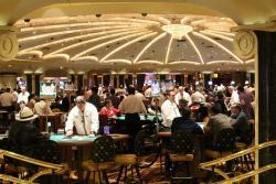 live casino-casinocruise