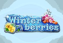 Winter Berries Slot kostenlos spielen