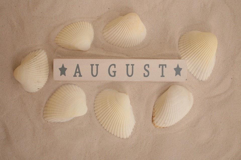 casino cruise-august deal