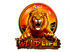 Wild Life Slot kostenlos spielen