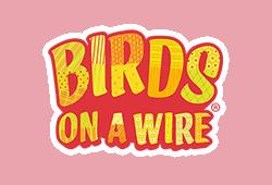 Birds on a Wire Slot kostenlos spielen