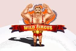 Red Tiger Gaming - Wild Circus slot logo